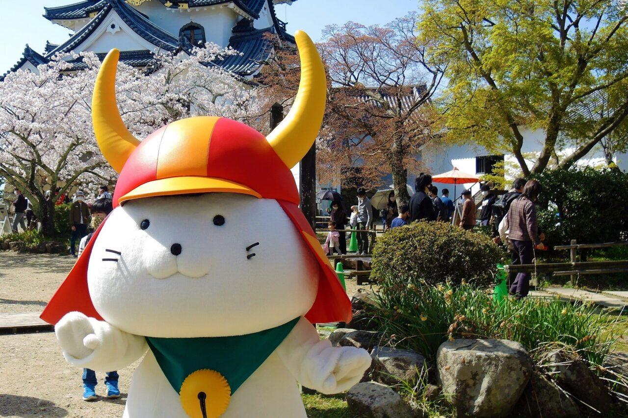 桜の彦根城とひこにゃん